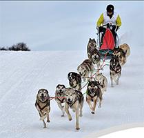Samedi  et dimanche  à Cuvéry : 30ème Course de Traîneaux à chiens avec les Huskies de Sibérie. (Organisée par la FFTPTC). La Retordica. Le Samedi  : première manche à 12H (jusqu'à 15H). Balade en traîneaux pour les enfants de 14H à 16h Feu d'artifice vers 19heures.