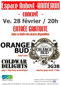 Belley - 1er Concert Espace Rameaux - www.ballad-et-vous.fr