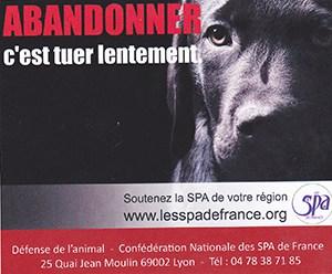 Campagne contre l'abandon chien ballad et vous