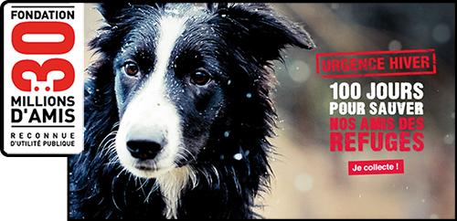 Affiche 30 millions d'amis urgence de l'hiver