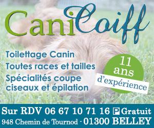 Carré-CaniCoiff